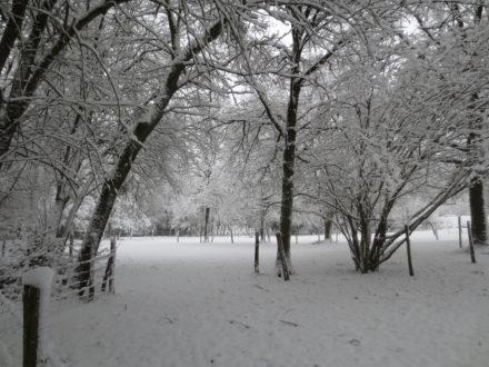 gîte neige